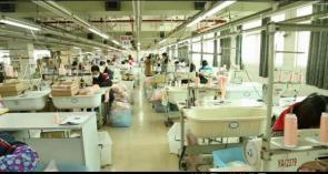 中山市歌绘服装有限公司_才通国际人才网_job001.cn