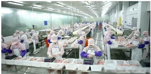 中山市大成冷冻食品有限公司_才通国际人才网_job001.cn