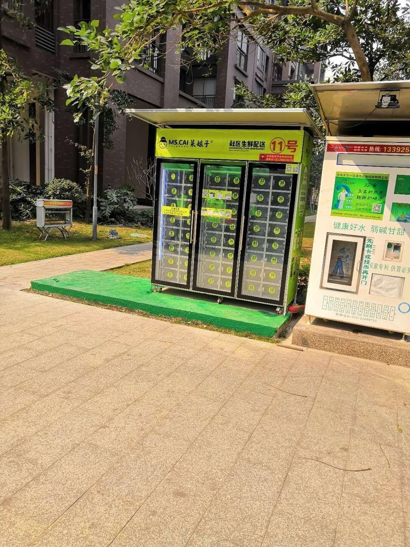 中山市菜娘子商业服务有限公司_才通国际人才网_job001.cn