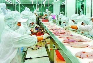中山市大成冷凍食品有限公司