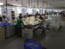 广东沃莱科技有限公司_才通国际人才网_job001.cn