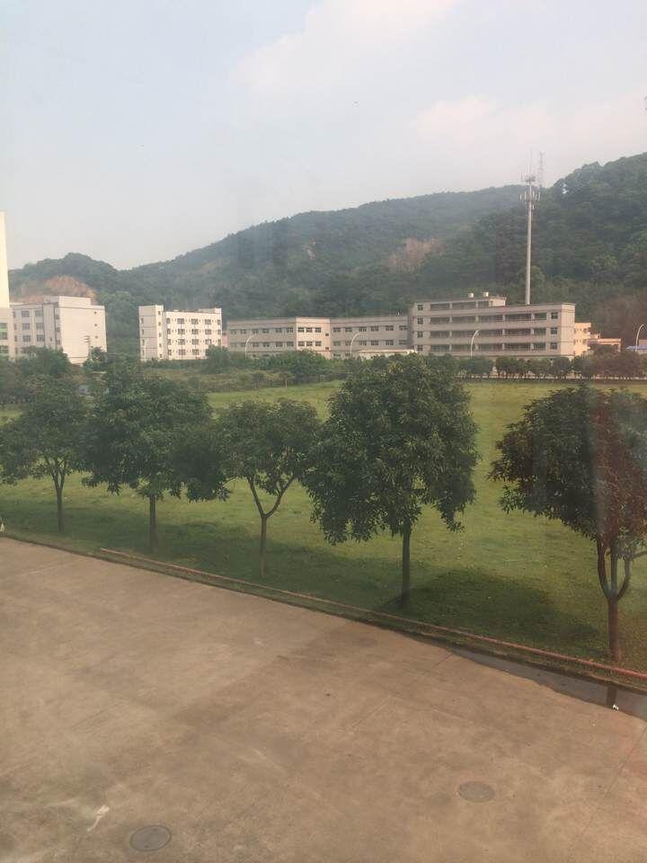中山创集电子有限公司_才通国际人才网_job001.cn