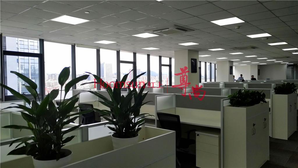 红上财富中山分公司_才通国际人才网_job001.cn