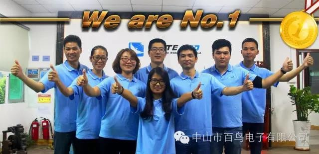 中山市百鸟电子有限公司_才通国际人才网_job001.cn
