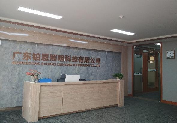 广东铂恩照明科技有限公司_才通国际人才网_job001.cn