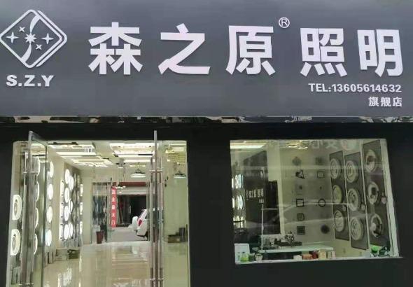 中山市普硕光照明有限公司_才通国际人才网_job001.cn