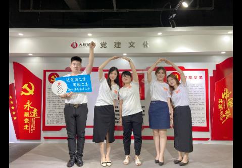 广东大唐盛视科技产业有限公司_才通国际人才网_job001.cn